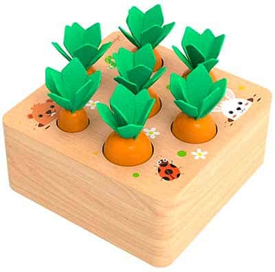 Cubo de madera para encajar zanahorias de diferentes tamaños