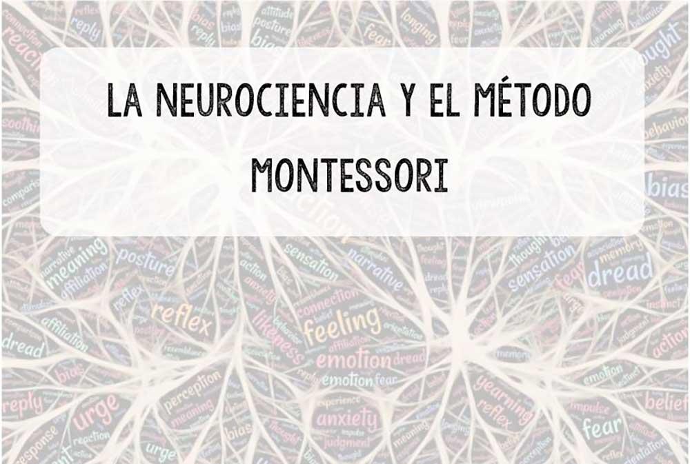 Neurociancia y el método Montessori