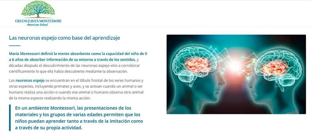 Neurociencia-6-php