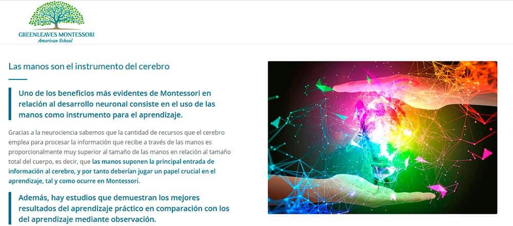 Neurociencia-php