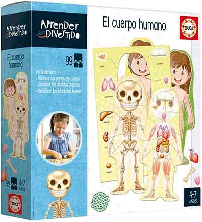 juguete de anatomia infantil